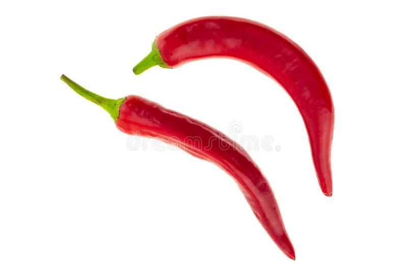 Poivre de piment lumineux rouge frais d'assaisonnement épicé sur une paire blanche de fond du menu bas de légumes faisant cuire l images libres de droits