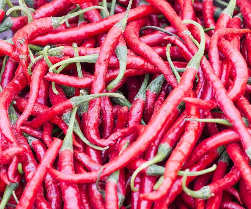 Poivre de piment rouge frais image libre de droits
