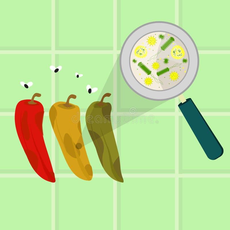 Poivre de piments putréfié et corrompu illustration stock