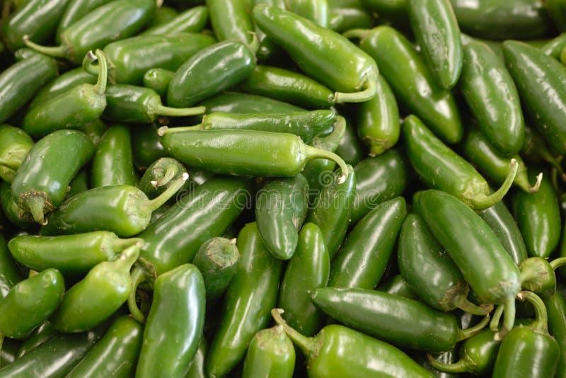 Poivre vert image stock