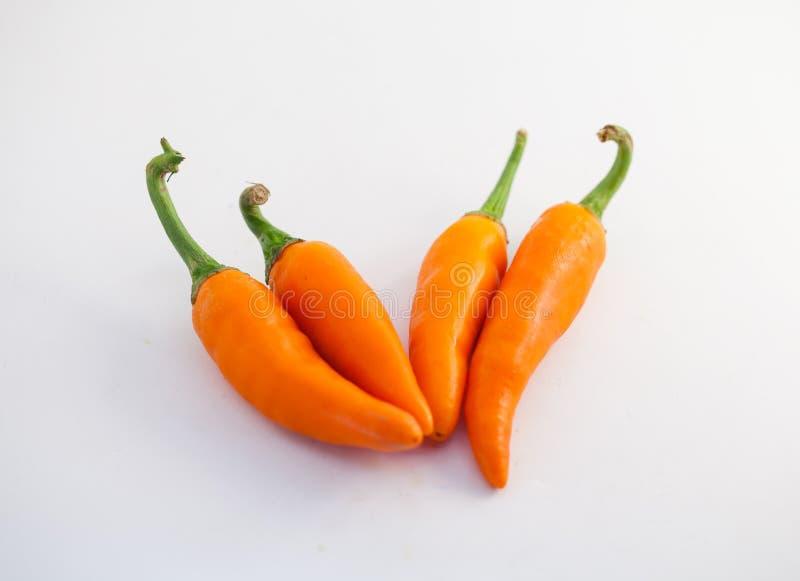 Poivron orange sur un fond blanc images libres de droits