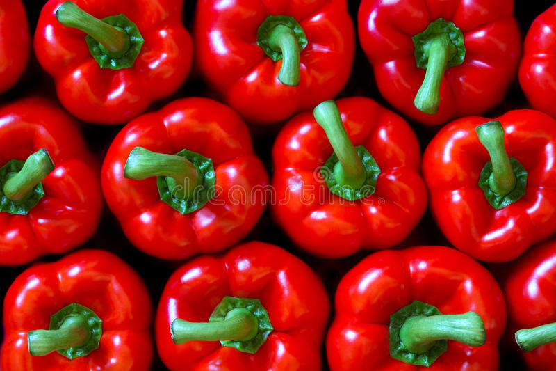 Poivron rouge photos stock