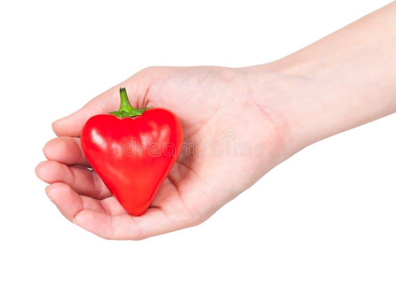 Poivron rouge photo stock