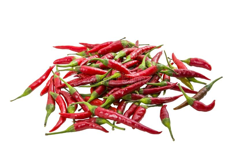 Poivron rouge chaud image stock