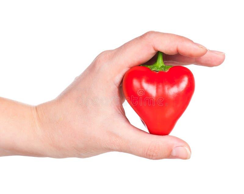 Poivron rouge cru photo stock