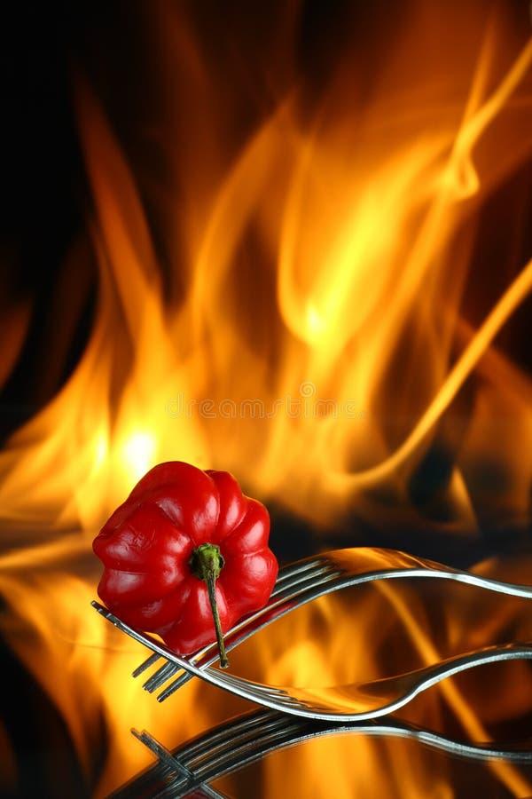 Poivron rouge sur des fourchettes avec l'incendie images libres de droits