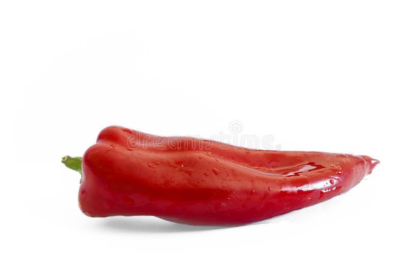 Poivron rouge vegatable image libre de droits