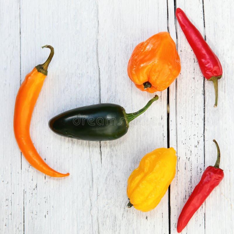 Poivrons colorés de cloche et de piments photographie stock