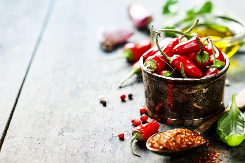 Poivrons de piment avec des herbes et des épices photographie stock libre de droits