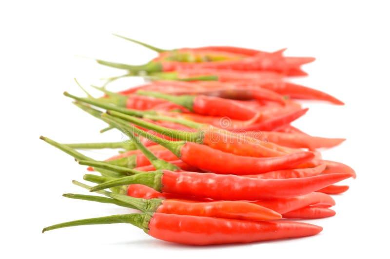 Poivrons de piment rouge images libres de droits