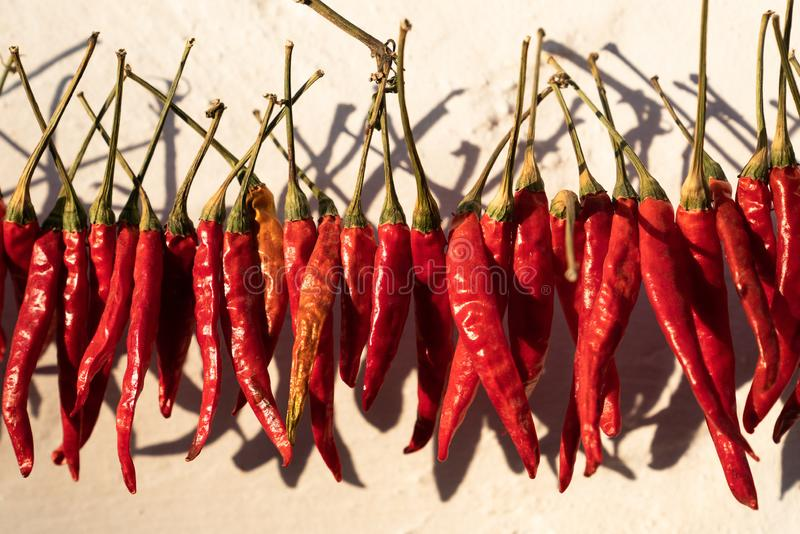 Poivrons rouges accrochant pour sécher en soleil en dehors d'une maison image libre de droits