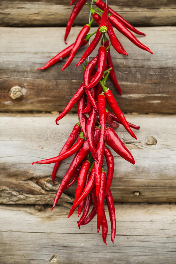 Poivrons secs rouges images stock