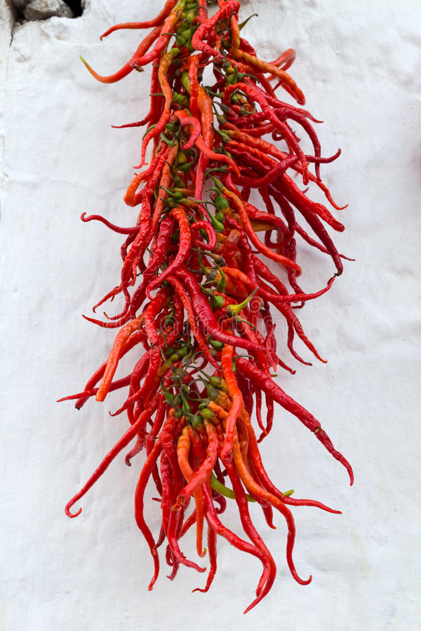 Poivrons secs rouges accrochant sur le mur image libre de droits