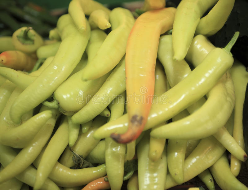 Poivrons verts image stock