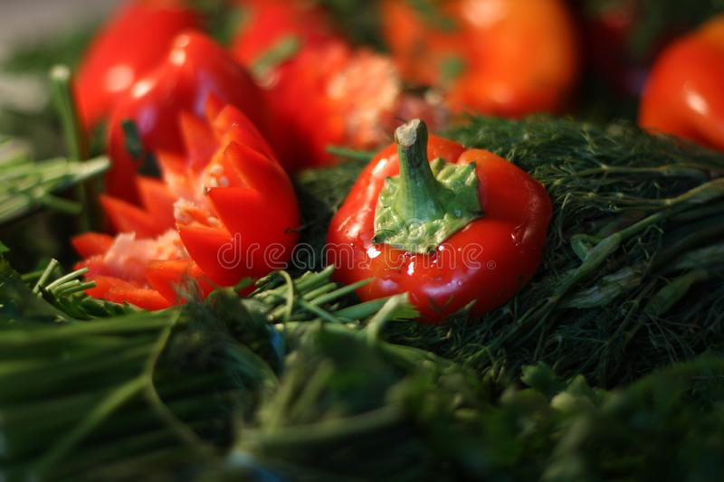 Poivrons verts et rouges, aneth, persil photographie stock
