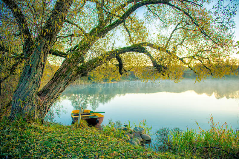 pojęcia łodzią rana lake mglista natury zdjęcie royalty free