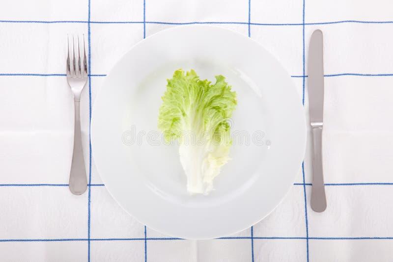 pojęcia diety liść sałata zdjęcia stock