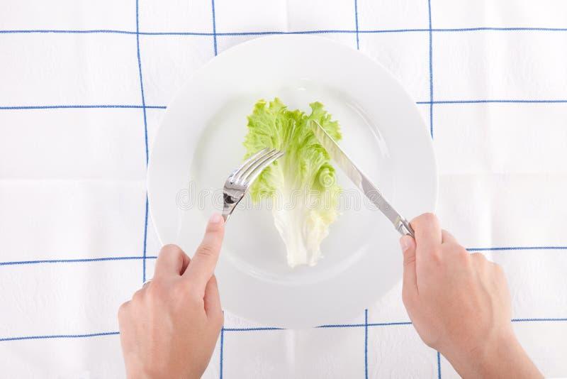 pojęcia diety liść sałata obrazy royalty free