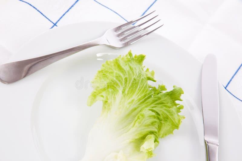 pojęcia diety liść sałata zdjęcia royalty free