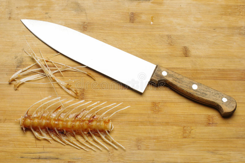 pojęcia dochodzenia magnifier mężczyzna kolejka nożowe i rybie kości zdjęcia royalty free
