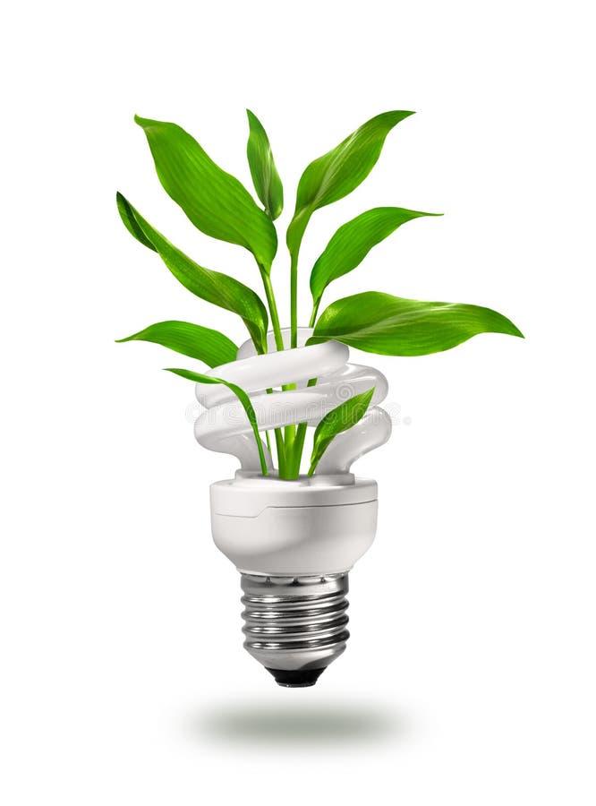 pojęcia eco energii zieleń zdjęcia stock