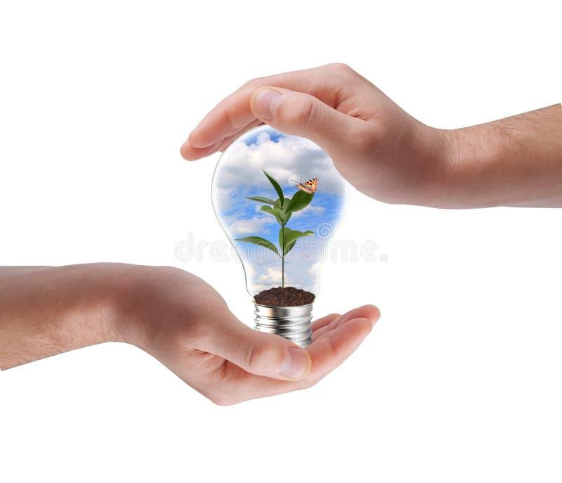 pojęcia energii zieleń obraz stock