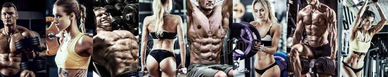 Pojęcia gym bodybuilding obraz royalty free