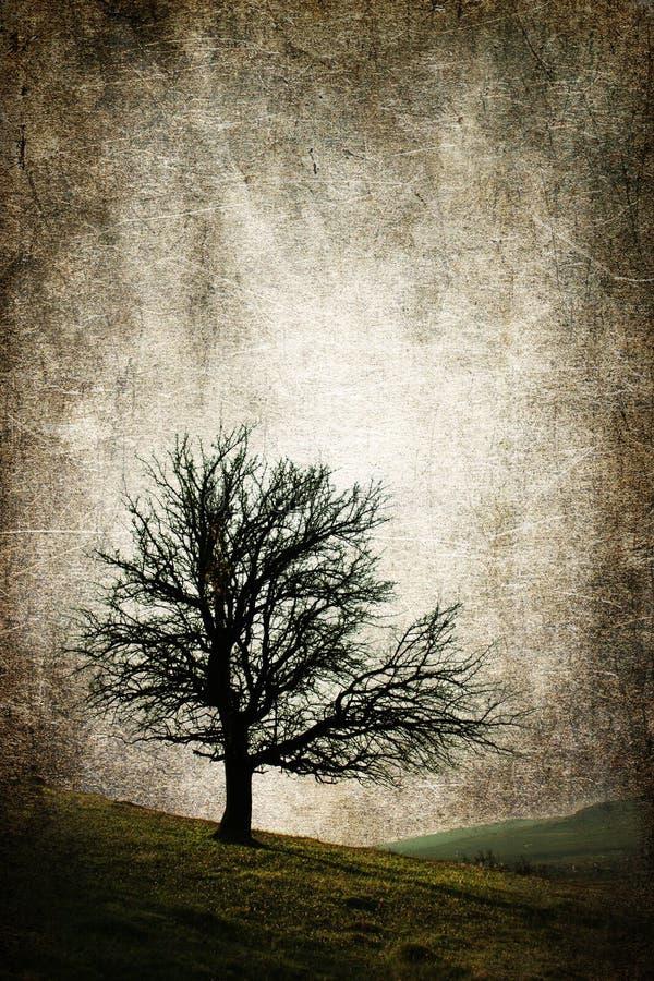 pojęcia ilustraci odosobniony drzewny rocznik royalty ilustracja