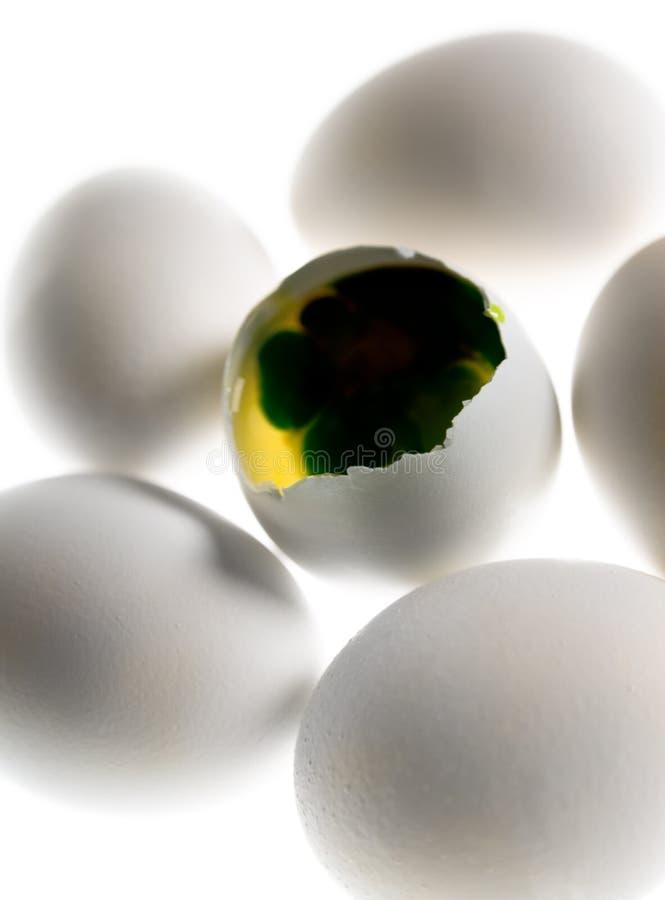 pojęcia jajko zdjęcia stock