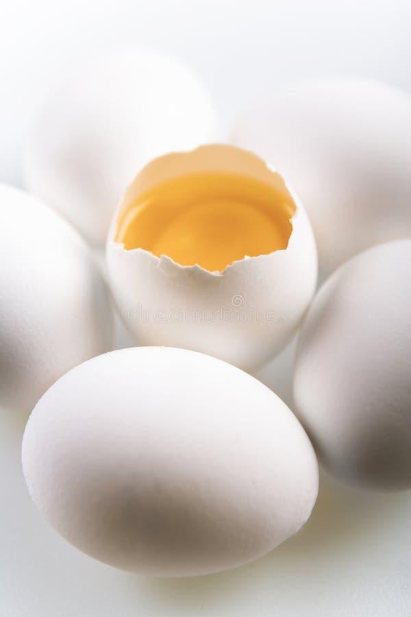 pojęcia jajko zdjęcie royalty free