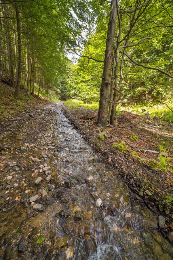 pojęcia strumienia czystego świeżej wody zdjęcie stock