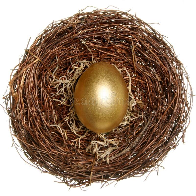 pojęcia złoty jajeczny pieniężny zdjęcie stock