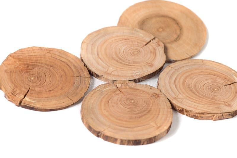 Pojęcie dendrochronologia drzewni bagażników wyraźnie widoczni roczni pierścionki, round plasterki drzewa, biały tło obraz stock
