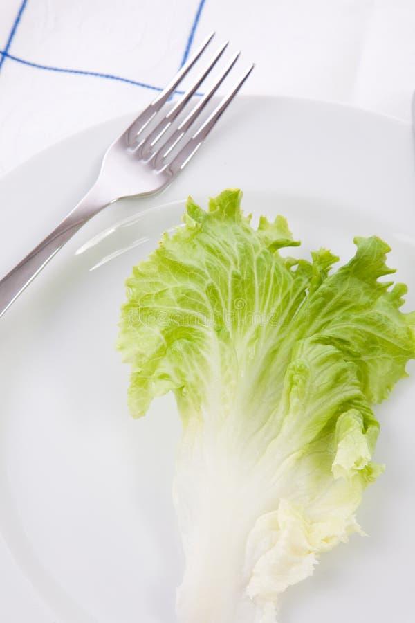 Pojęcie dla diety z sałata liściem na naczyniu obraz stock