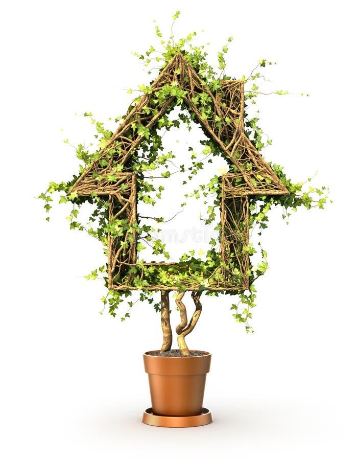 Pojęcie dom Roślina w formie dom ilustracji