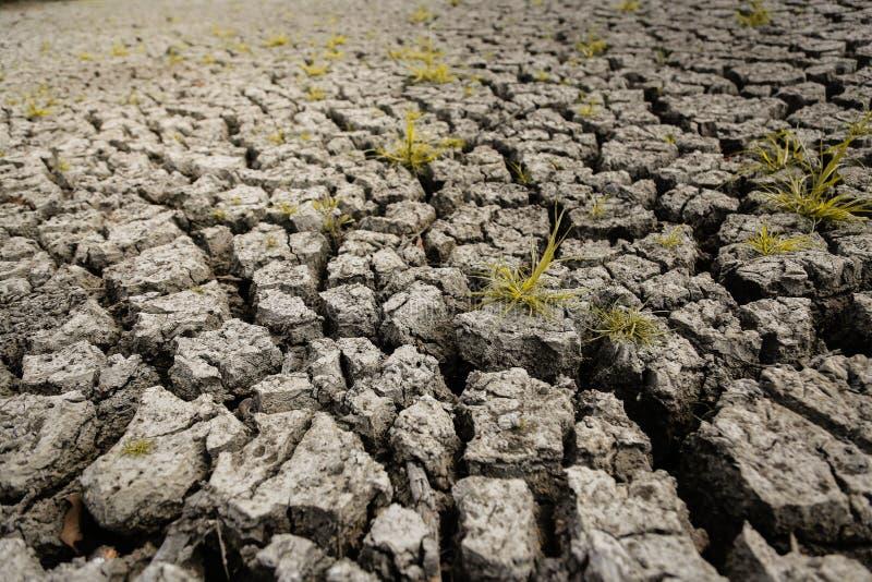 Pojęcie globalnego ocieplenia, gorącego i suchego klimat, zmiana klimat, ziemia dla odwiecznie upraw ilustracja wektor