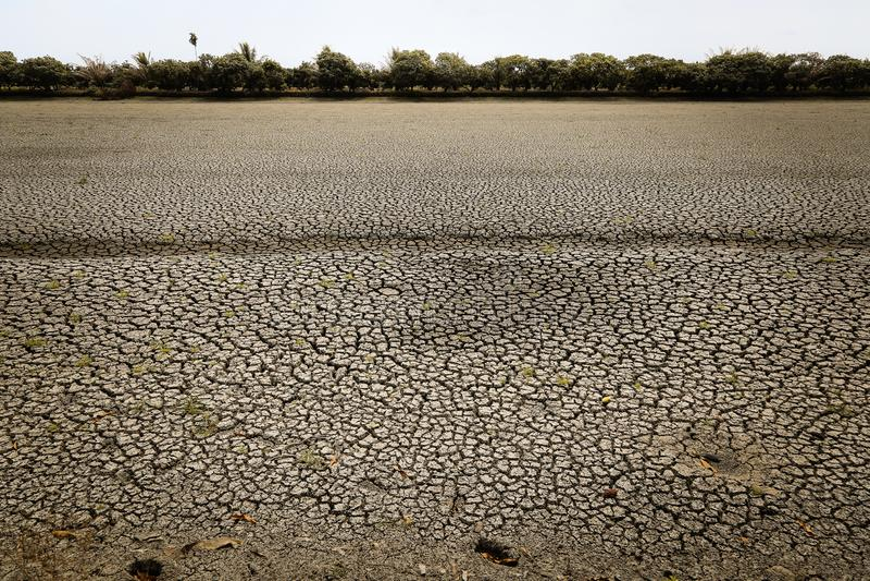 Pojęcie globalnego ocieplenia, gorącego i suchego klimat, zmiana klimat, ziemia dla odwiecznie upraw royalty ilustracja