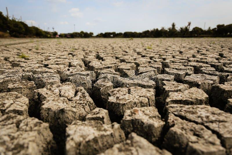 Pojęcie globalnego ocieplenia, gorącego i suchego klimat, zmiana klimat, ziemia dla odwiecznie upraw ilustracji