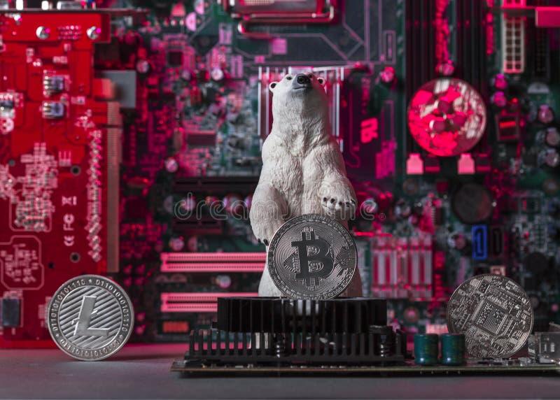 Pojęcie Niedźwiadkowy Crypto rynek fotografia stock