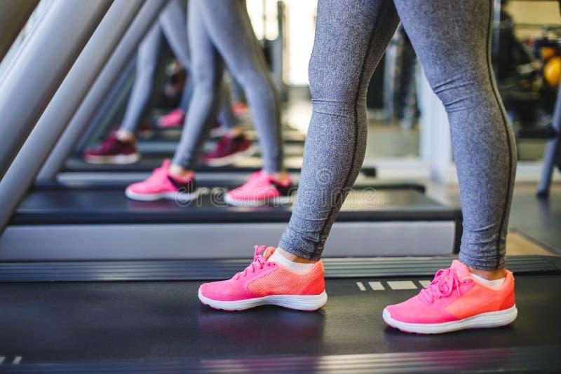 pojęcie odizolowywający sporta biel Zamyka up działający żeńscy cieki w sneakers w gym obrazy stock