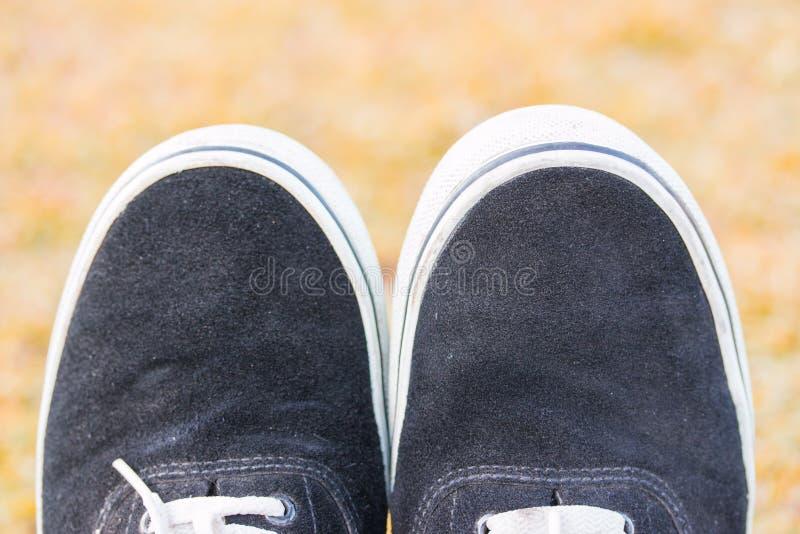 Pojęcie przyrodni buty zdjęcia stock