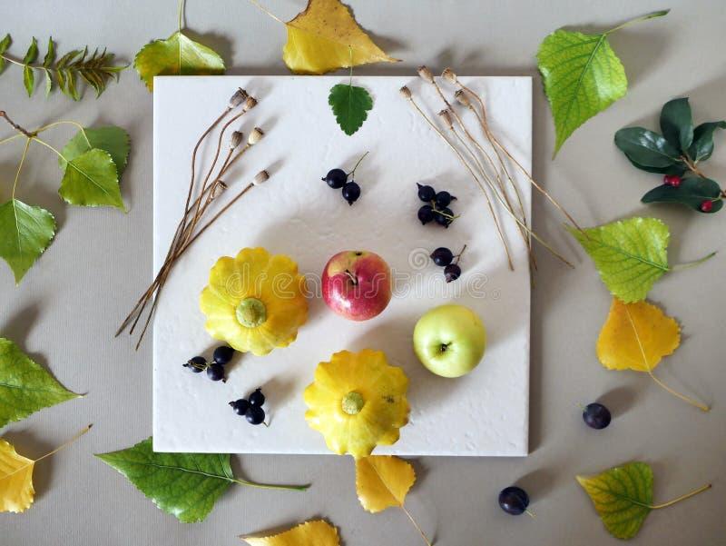 Pojęcie wczesna jesień, skład jagody, warzywa, kwiaty, liście, sztuka materiały obrazy stock