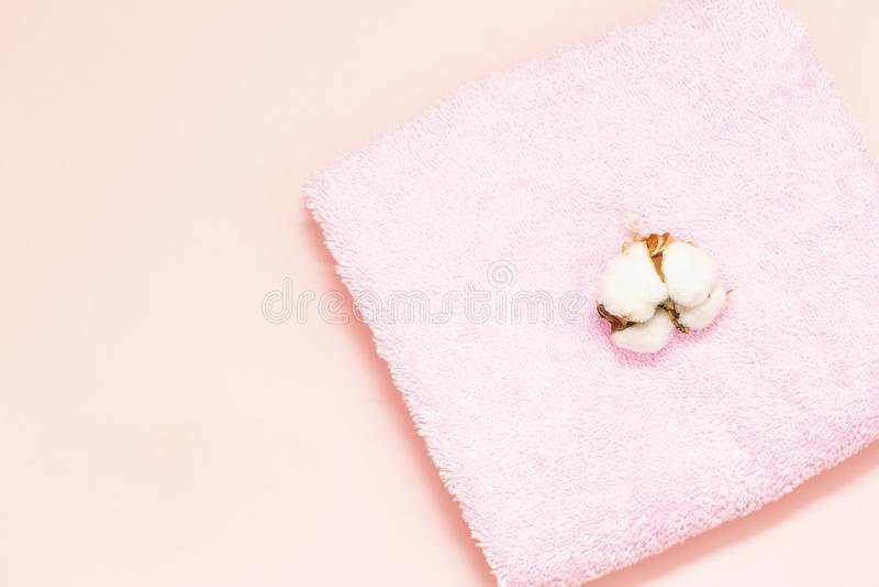 Pojęcie zdrój Płaski tło z gałąź bawełna zdjęcia royalty free