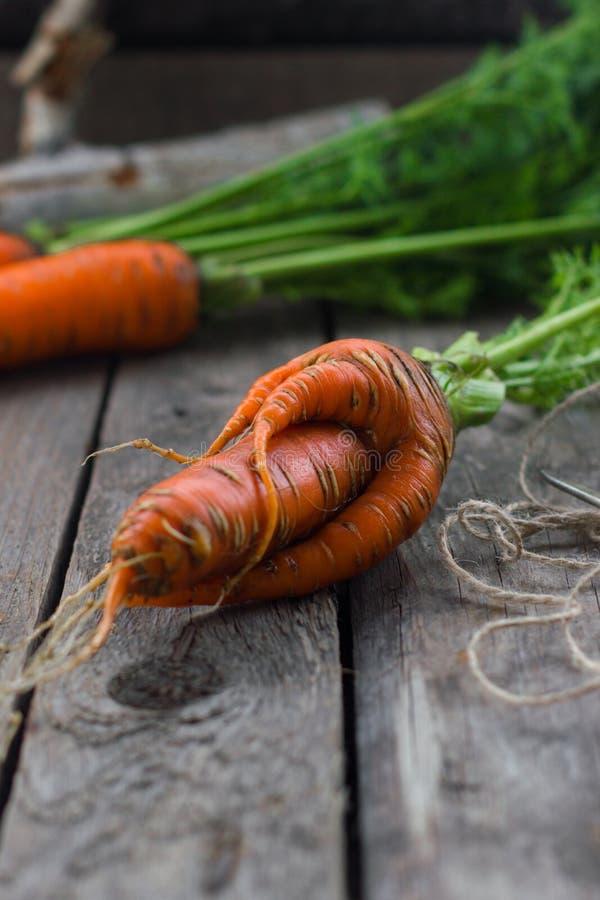 Pojęcie zdrowe łasowanie marchewki obrazy stock
