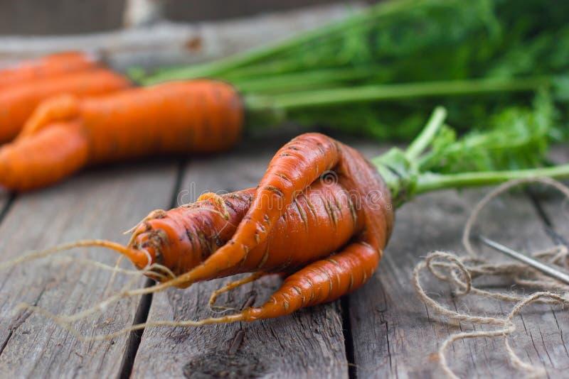 Pojęcie zdrowe łasowanie marchewki zdjęcia stock