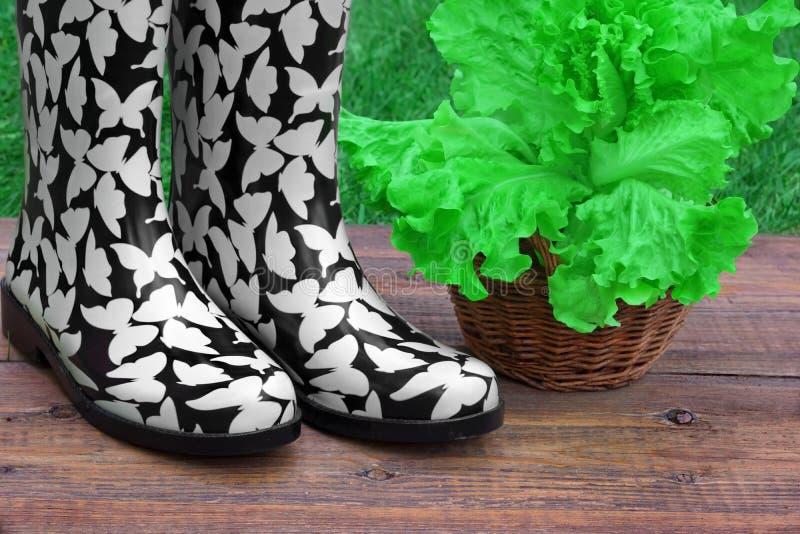Download Pojęcia ogrodnictwo zdjęcie stock. Obraz złożonej z nikt - 53783446