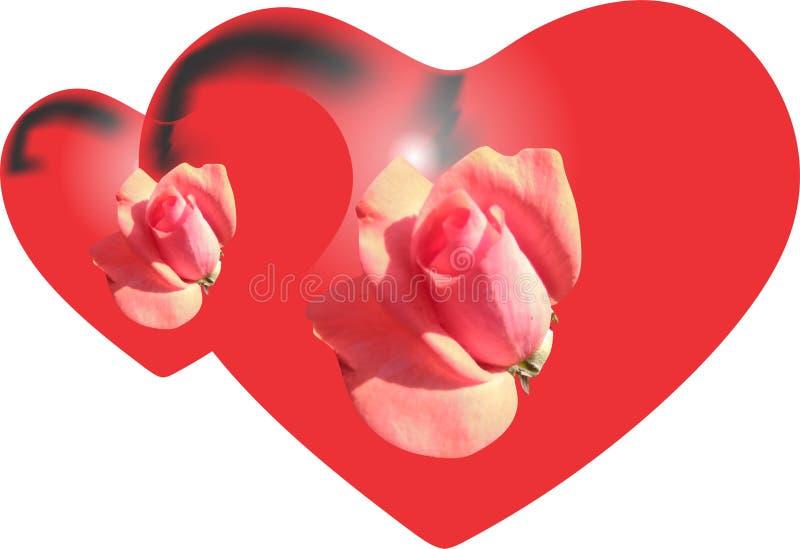 poj?cia serce nad czerwieni r??anym valentine biel czerwona r??a serca royalty ilustracja