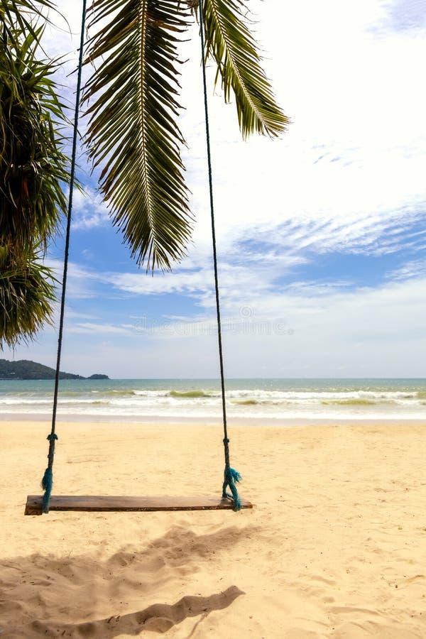 poj?cia t?a ramy piasek seashells lato Drewna huśtawkowy obwieszenie od kokosowego drzewka palmowego nad plażowym morzem Azja Taj obraz stock