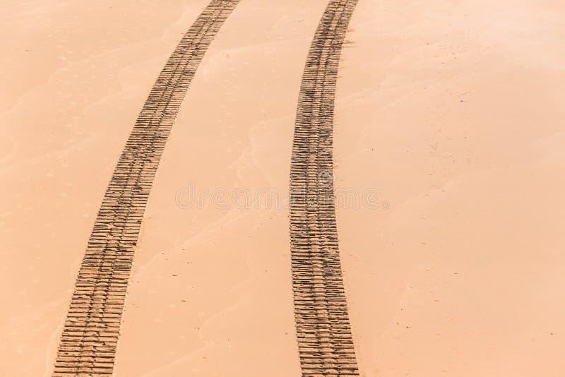 Pojazdów śladów odcisków koszt stały plaży piasek zdjęcie royalty free