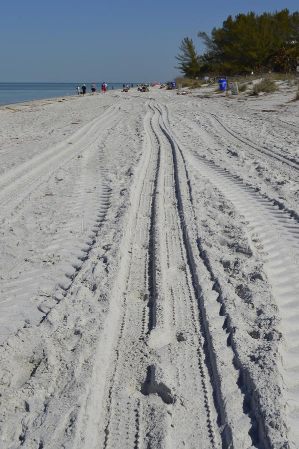 Pojazdów ślada w piasku fotografia royalty free